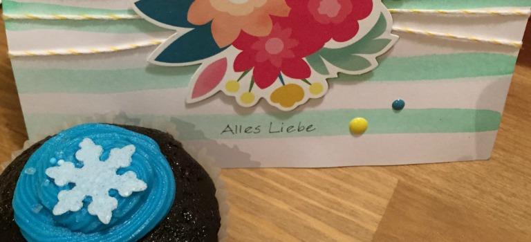 Vegane Schokoladen-Cupcakes